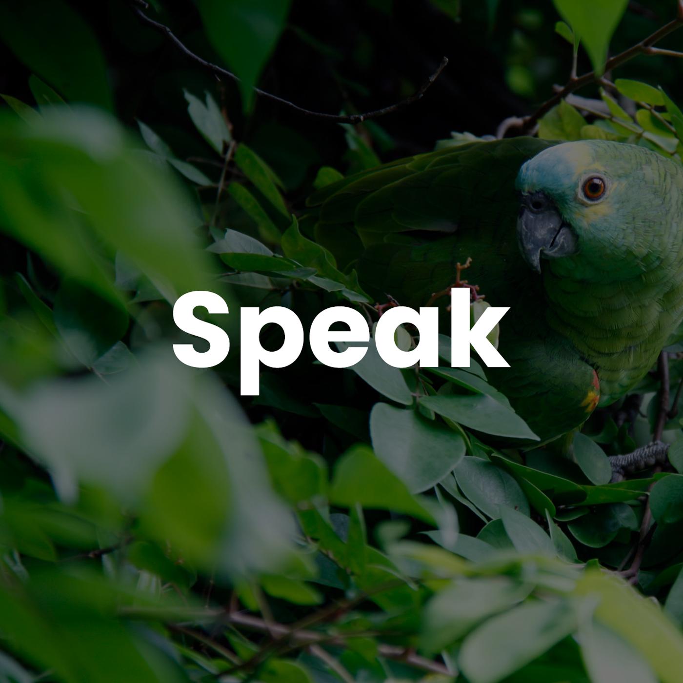 Speak With Tyler Bryden
